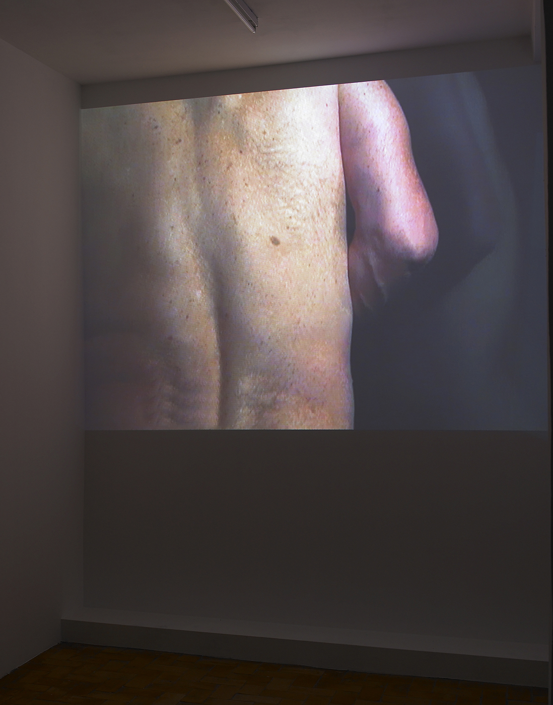 Gary Hill - Up Against Down (back/torso), 2008